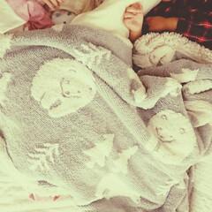 2歳差/2歳児/新生児/仲良し/お昼寝/姉妹/... 姉は狭くても大好きな妹の横で寝たいと!!