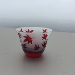 サンドブラスト/グラス/ガラス/江戸切子/秋/紅葉 やがて訪れる秋をいち早く感じる紅葉💕🍁🍂…