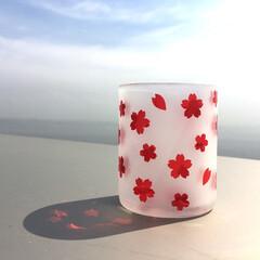 サンドブラスト/桜/ロックグラス/春/リサイクル瓶/ハンドメイド 焼酎が入ってた赤い瓶をロックグラスサイズ…