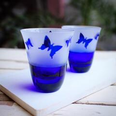 サンドブラスト/江戸切子/グラス/蝶/食前酒 スリムタイプのお猪口 涼しげな蝶