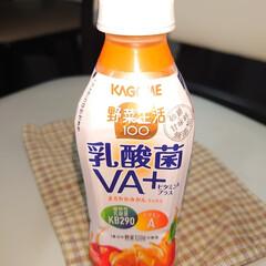 乳酸菌飲料/カゴメ野菜ジュース/野菜ジュース/腸活 カゴメ野菜生活乳酸菌VA+が美味しい👌 …