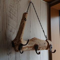 玄関/カフェ風インテリア/男前インテリア/チェーン/セリア/100均/... 流木でキーフック作りました。独特な形が好…