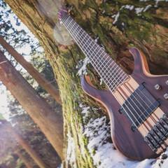 ギター/ベース/楽器/神社/雪/冬/... ベース