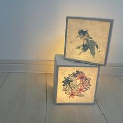 雑貨だいすき/和紙/和/金魚/ライト/照明/... 金魚と紅型紅葉の和紙のキューブライト。 …