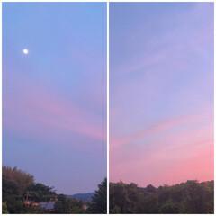 田舎/風景/景色/家の窓/住まい ☆夕焼け☆ 家の窓からの景色です☆ 夕焼…