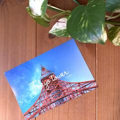 love/東京タワー/ポストカード/住まい/暮らし/フォロー大歓迎 先日東京タワーに行った義両親から届いたポ…