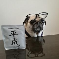 平成おじさん/メガネ/わたしのGW 仕事でお出掛けできないので 平成おじさん…