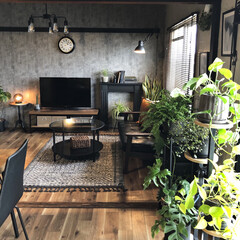植物のある暮らし/団地DIY/団地暮らしを愉しむ/団地暮らし/インダストリアルインテリア/団地インテリア/... 小さなこだわり。  我が家はリビングとキ…(1枚目)