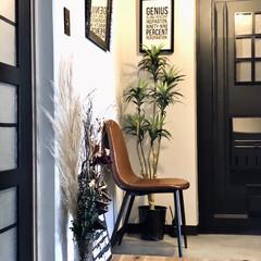 玄関DIY/玄関インテリア/シンプルにしたい/シンプル/パンパスグラス/団地玄関/... 先日のお盆休みに玄関を模様替えしました。…