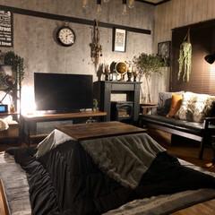 コタツ/フェイクグリーン/インダストリアルインテリア/男前インテリア/枝物/コンクリート壁紙/... テレビ横に間接照明を兼ねて小さなテーブル…
