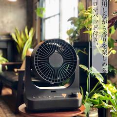 ドウシシャ/サーキュレーター/間接照明のある暮らし/間接照明/観葉植物のある暮らし/団地インテリア/... もう使っている方も多いと思いますがサーキ…(3枚目)