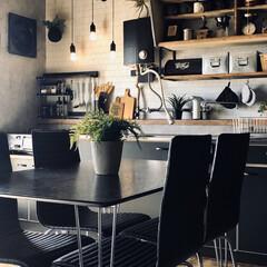 フェイクグリーン/インダストリアルインテリア/コンクリート風壁紙/団地インテリア/団地DIY/団地キッチン/... キッチンをスッキリ化。 シンクの扉を黒の…