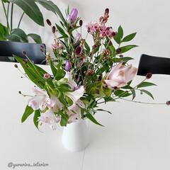 花のある暮らし/花の定期便/花/IKEA/フラワーベース/ホワイトインテリア お花の定期便【medelu】より届いたお…