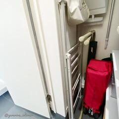 脚立/玄関収納/玄関/ステップ/土間収納/収納 狭いスペースに収納できる、うすーい脚立を…