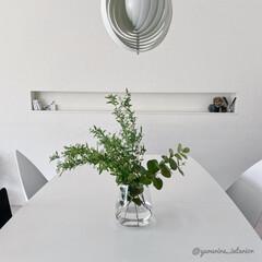 花のある暮らし/みどりのある暮らし/IKEA/ホワイトインテリア/モノトーンインテリア/北欧インテリア/... 開花前のコデマリを買いました。4本買った…