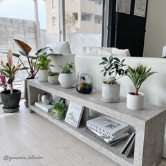 ベタ/ベタ水槽/みどりのある暮らし/ボトルアクアリウム/観葉植物/棚DIY/... 最近DIYした棚にベタ水槽を置きました。…
