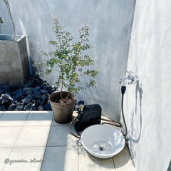 モノトーン/庭/庭のある暮らし/ユーカリ/海外インテリア/エクステリア/... 庭の水栓は壁から直接蛇口が出ているタイプ…