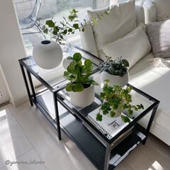 みどりのある暮らし/IKEA/モノトーンインテリア/海外インテリア/北欧インテリア テレビ横の壁際にあったこのネストテーブル…