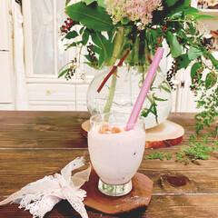 ヨーグルト/無花果/スムージー/花のある暮らし/レザー/コースター/... 無花果が美味しい季節になりましたね  毎…