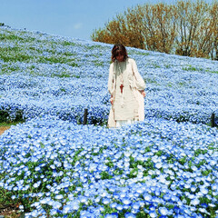 海の中道海浜公園/福岡/ネモフィラ/春のフォト投稿キャンペーン/春/ファッション/... 母娘で福岡旅行してきました ネモフィラが…
