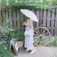 アンティークショップ/岡山/ガーデン/お庭/日傘/すてきな作品/... 岡山にお出掛けした時にお邪魔した アンテ…