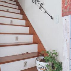 デザイン階段/階段/ホワイトインテリア/DIY/リメイク/漆喰/... 小学生だった娘と一緒に漆喰塗ってタイルを…(1枚目)