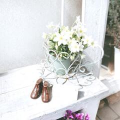 姿見DIY/ベンチDIY/クレマチス/ガーデン雑貨/ガーデン/DIY/... 玄関入り口ベンチの上に春を❁