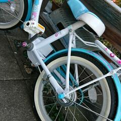 頑張れ/練習/もうすぐ6歳/年長さん/自転車/補助輪 補助輪はずしました! 日曜から練習してま…