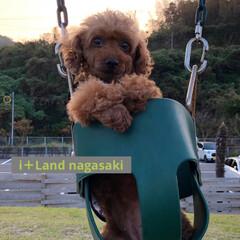 ブランコ/伊王島/i+Land nagasaki/長崎/旅行 i+Land nagasaki 2回目〜…