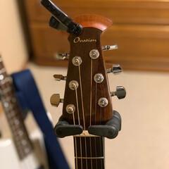 ギター/ギターコレクション リビングに置いてあるギター ベースの写真