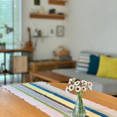 北欧インテリア/北欧ナチュラル/ダイニング/IKEA/テーブルランナー/三角フラスコ/... 庭で沢山の花を咲かせているアフリカンアイ…