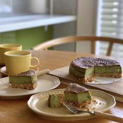 暮らしを楽しむ/カフェ時間/iittala/作家さんの器/北欧ナチュラル/チーズケーキ/... 抹茶チーズケーキ。  真冬に作ったスイー…
