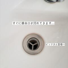 ドクタークロ/スクラビンバブル/トイレ/キッチン泡ハイター/モコ泡わトイレクリーナー/トイレ手洗い器の掃除/... こんばんは😃🌃 . . 今日のこそうじは…(2枚目)