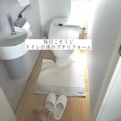 東リ/床の貼り替え/クッションフロア/トイレの床のプチリフォーム/毎日こそうじ/こそうじ/... こんばんは😃🌃 . . 今日のこそうじは…