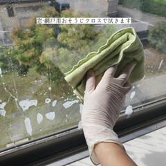 窓網戸用おそうじクロス/そうじの神様/ガラスマジックリン/拭き掃除/窓拭き/毎日こそうじ/... こんばんは😃🌃 . 今日のこそうじは、息…(4枚目)