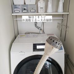 掃除/ポイントブラシ/ウタマロクリーナー/洗濯機/お湯取りホースの掃除/毎日こそうじ/... こんばんは🌃 . . 今日のこそうじは、…