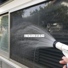 大掃除始めました/掃除/サンサンスポンジ/ホームリセット/クイックル/窓掃除/... こんばんは🌃 . . 今日のこそうじは、…(2枚目)