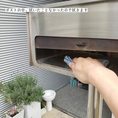 掃除/そうじの神様/フローリング用おそうじクロス/ウタマロクリーナー/玄関の拭き掃除/拭き掃除/... こんばんは🌃 . . 今日のこそうじは、…(6枚目)