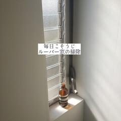窓網戸用おそうじクロス/そうじの神様/クイックル/ホームリセット/拭き掃除/ジャロジー窓/... こんばんは🌃 . . 今日のこそうじは、…(1枚目)