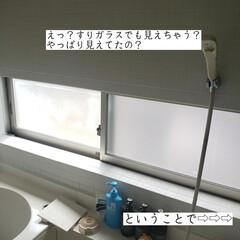 浴室丸見え/目隠し対策/ホームコーディー/シャワーカーテン/すりガラスは丸見え/目隠し こんばんは🌃 . . 今日はこそうじでは…(1枚目)
