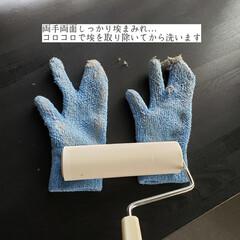 そうじの神様 おそうじ手袋 3つ指 青(モップ、雑巾)を使ったクチコミ「こんばんは😃🌃 . . 今日のこそうじは…」(8枚目)