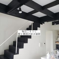 クイックルワイパー/壁と階段の拭き掃除/拭き掃除/毎日こそうじ/こそうじ/掃除 今日のこそうじは、壁と階段の拭き掃除をし…