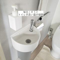 ドイツふきん/BLITS/輝き洗剤キーラ/手洗い器/トイレ手洗い器の掃除/毎日こそうじ/... こんばんは😃🌃 . . 今日のこそうじは…