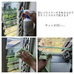 窓網戸用おそうじクロス/そうじの神様/パストリーゼ/スリット窓/スリット窓の拭き掃除/毎日こそうじ/... こんばんは😃🌃 . . 今日のこそうじは…(5枚目)