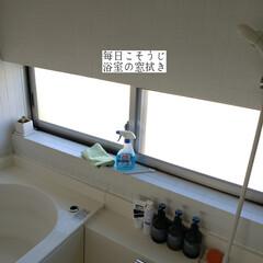 掃除/ポイントブラシ/無印良品/ガラスマジックリン/窓網戸用おそうじクロス/そうじの神様/... こんばんは🌃 . . 今日のこそうじは、…