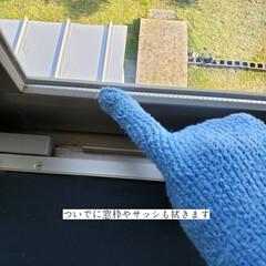 そうじの神様 おそうじ手袋 3つ指 青(モップ、雑巾)を使ったクチコミ「こんばんは😃🌃 . . 今日のこそうじは…」(7枚目)