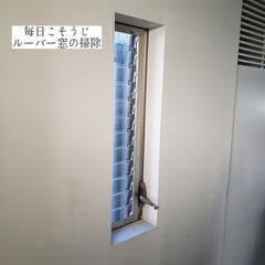 サンサンスポンジ/ウタマロクリーナー/拭き掃除/ジャロジー窓/窓網戸用おそうじクロス/そうじの神様/... こんばんは🌃 . . 今日のこそうじは、…
