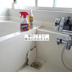 カビダッシュ/パイプユニッシュ/カビキラー/排水口/浴室排水口の掃除/排水口のお手入れ/... こんばんは🌃 . . 今日のこそうじは、…