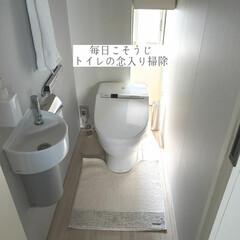 お掃除用綿棒/クエン酸泡スプレー/トイレ掃除/トイレの念入り掃除/毎日こそうじ/こそうじ/... こんばんは😃🌃 . . 今日のこそうじは…