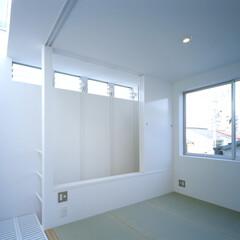 名古屋/ファインフロア/トップライト/畳 吹抜やトップライトに面するタタミ室。